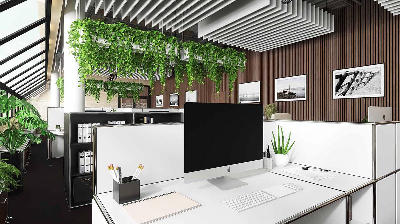 Büro_Pflanzen_natürlich_Trend_Nachhaltigkeit