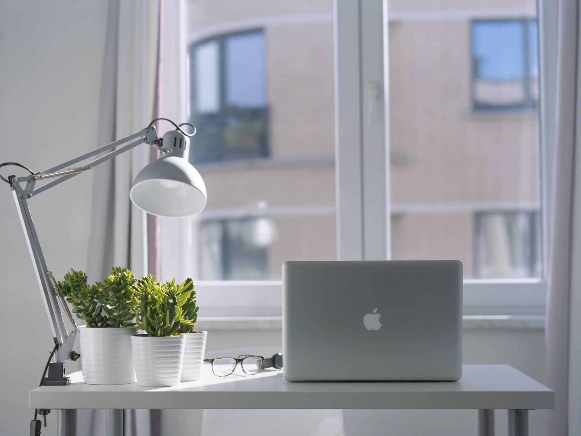 Inspiration_Natur_Schreibtisch_am Fenster_natürliches_Licht_Pflanze