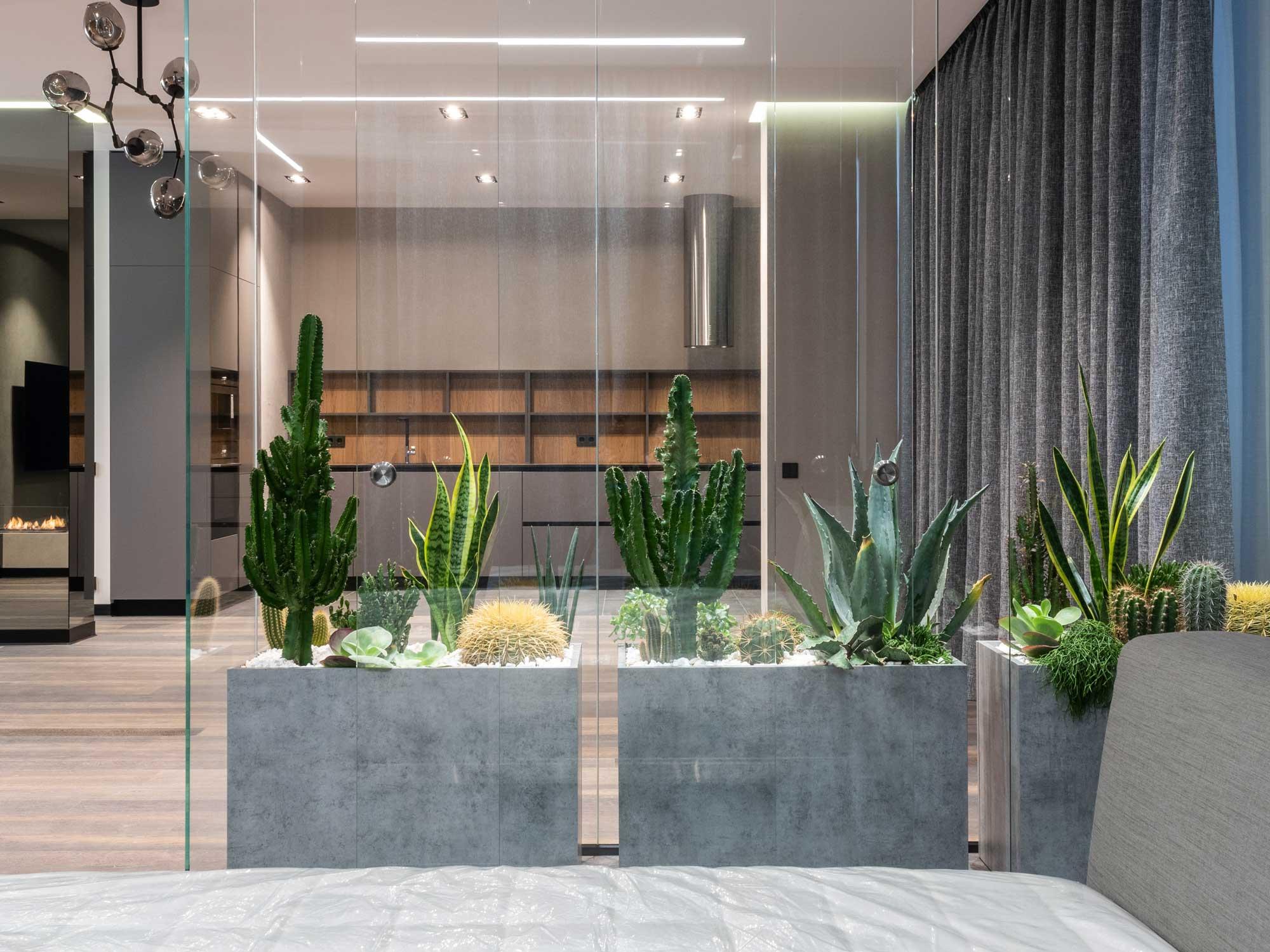 Luxuriöses_Design_exklusive_Farben_Materialien_Vorhänge_Natürliche_Materialien_Kakteen_stein