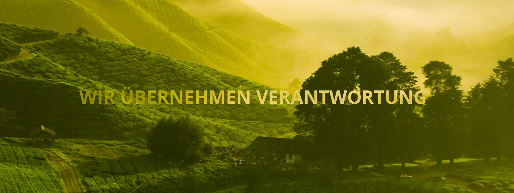Dauphin_Marke_davea_nachhaltigkeit